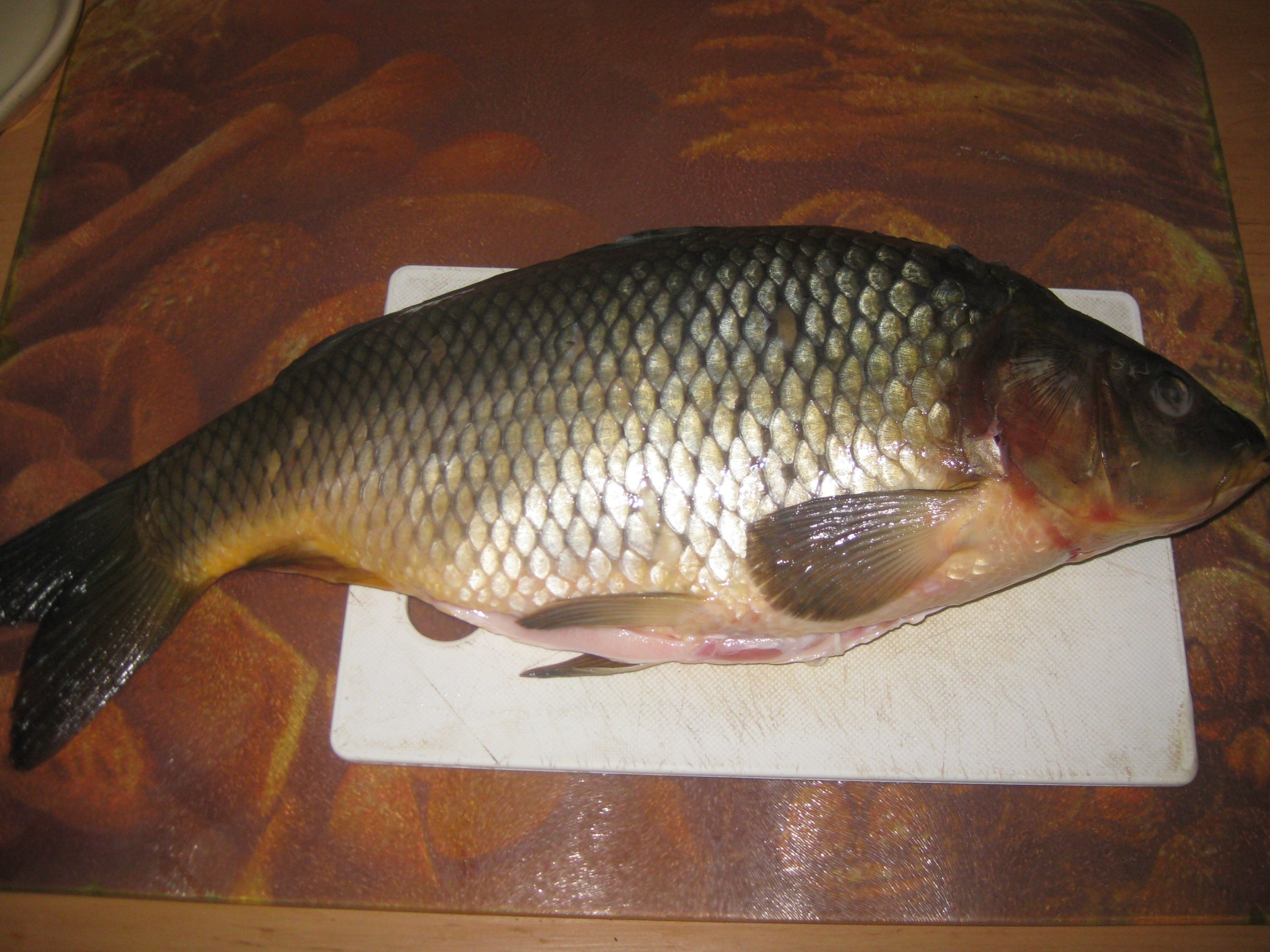 Merry christmas vesel vianoce slovakia blog for What does carp mean