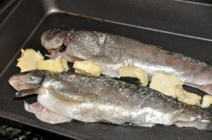 whole trout with butter before baking
