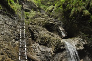 tall steep ladder in sucha bela slovak paradise slovensky raj